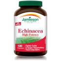 Echinacea Purpurea High Potency 120 Cap